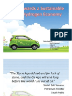 Towards a Sustainable Hydrogen Economy