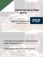 Gestión comercial de la papa nativa de Chiloé (PowerPoint)