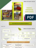 PUESTO VENDEDOR AMBULANTE (6)