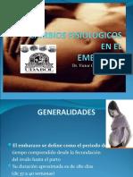4 CAMBIOS FISIOLOGICOS EN EL EMBARAZO - copia