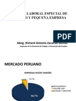 REGIMEN LABORAL ESPECIAL DE LAS MIPE´S Richard