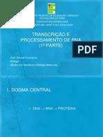 TRANSCRIÇÃO E PROCESSAMENTO DE RNA-1ª PARTE