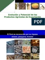 PresentacionRicardoHuancarunaPeru