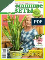 preview_domashnie-tsvetyi-2021-08-2021