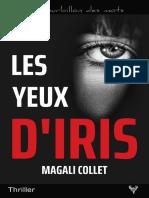 EXTRAIT du roman « Les Yeux d'Iris » de Magali Collet