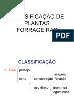 Classificao de Plantas Forrageiras