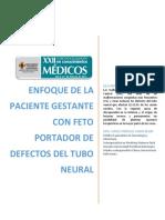 Enfoque de la paciente con feto portador de defectos de tubo neural