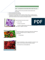 Método de Estudo Das Células