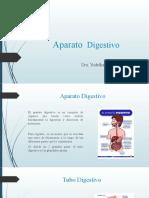 Introducción Al Tubo Digestivo y Antropometría Nutricional (3) (1)