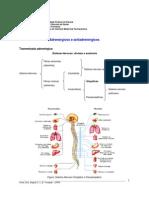 adrenergicoseantiadrenergicos