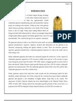 FINAL_Garment_Industry
