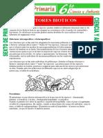 Factores-Bioticos-para-Sexto-de-Primaria