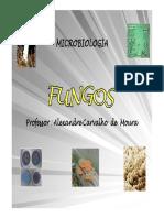 Fungos corrigido final