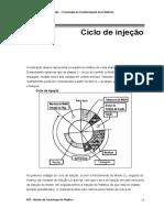 04 - Ciclo de injeção 2007