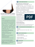 Verde y Gris Analista de Sistemas Tecnología Currículum (4)