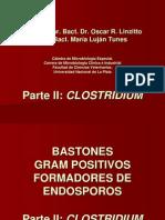 Bacilos formadores de esporos Clostridium  generalidades