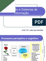 Cognição Sist Informação Abrahão