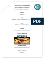 ensayo de nutricion (2)