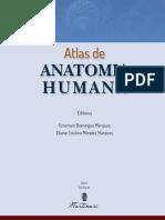 Atlas Anatomia (1)