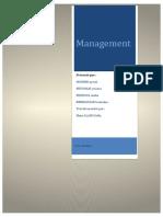 Management Pilotage de La Perfprmance