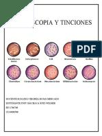 MICROSCOPIA Y TINCIONES 1