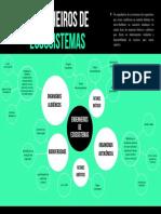 Mapa mental Engenheiros de Ecossistema