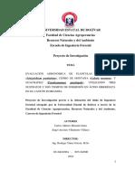 EVALUACIÓN AGRONÓMICA DE PLÁNTULAS DE PACHACO, CEDRO DE MONTAÑA, Y GUACHAPELÍ, UTILIZANDO TRES SU