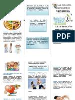 241524350 Folleto Habitos Saludables