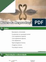 Bases da Reprodução
