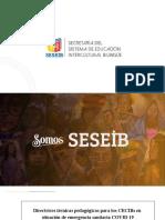 Directrices EIB Sierra 13-10-2020