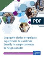 Yv Technicalpackage Spanish
