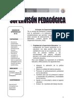 SUPERVISIÓN PEDAGÓGICA SESIÓN N°01