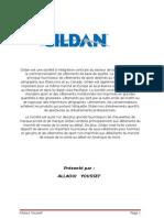 Analyse financière de la compagnie Gildan 2