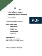 RELATÓRIO QUI_EXP2 - Forças Oxidante e Redutora