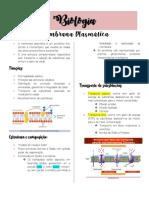 MEMBRANA PLASMÁTICA pdf