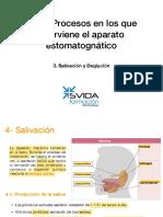 UD3 3.Salivación- SUBRAYADO