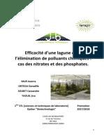 lagunage-et-depollution-chimique