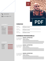 74 Modele Cv Developpeur Web