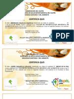 Certificado de Manipulacion de Alimentos