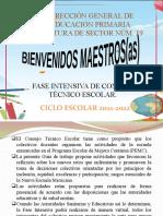 CTE FASE INTENSIVA 21-22 (1) (2)