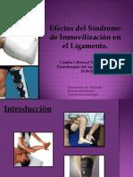 Efectos de inmovilización en el ligamento