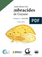 Membracides de Guyane