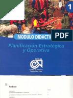 Planificación Estrategica y Operativa Yauli Junin