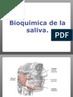 Bioquimica de la saliva