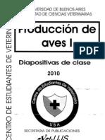 Diapositivas de Clase 2010