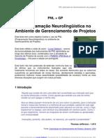 PNL (Programação Neurolinguística) no ambiente de Gerenciamento de Projetos