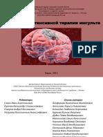 Протоколы ИТ Инсульта Томск, 2013