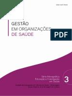 Gestao_em_Organizacoes_N