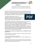 CAP - 4 IDENTIFICACION DE IMPACTOS AMBIENTALES