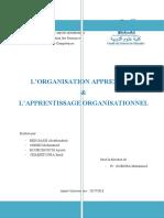 Rapport Orgnisation Apprenante